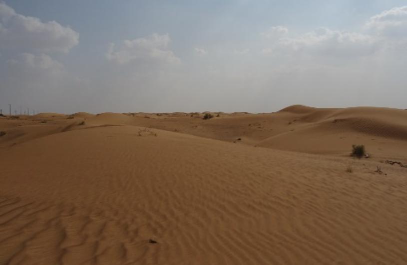 Blog   Création de référentiels sur le territoire de Ras al Khaimah