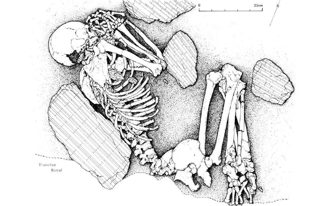 Article   Métissages biologiques entre migrants néolithiques et chasseurs-cueilleurs locaux en Europe de l'Ouest
