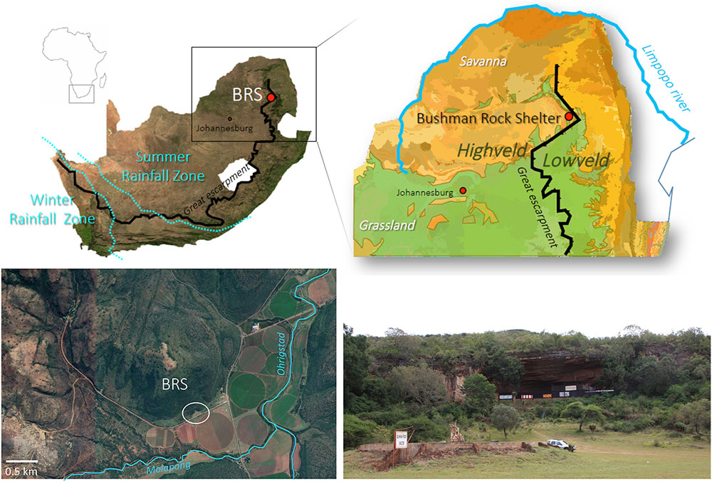Article | Evaluating sampling methods in charcoal-rich layers and high diversity environment: A case study from the Later Stone Age of Bushman Rock Shelter, South Africa