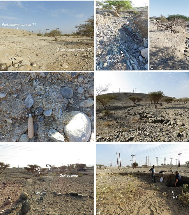 Article | Ancient agriculture in Southeast Arabia: A three thousand year record of runoff farming from central Oman (Rustaq)